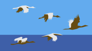 Birds flying in blue sky used for policy or procedure update